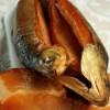 Копчение рыбы в домашних условиях, домашние рецепты